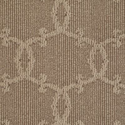 Shaw Floors Caress By Shaw Naturally Southern Andes 00202_CCP11