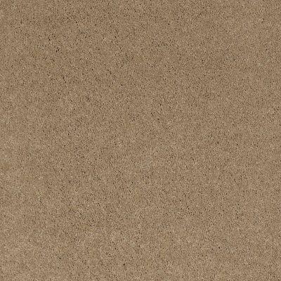 Shaw Floors Caress By Shaw Cashmere I Llama 00701_CCS01