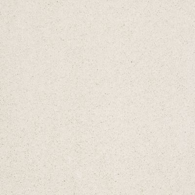 Shaw Floors Caress By Shaw Cashmere III Icelandic 00100_CCS03