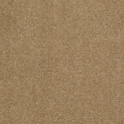 Shaw Floors Caress By Shaw Cashmere III Navajo 00703_CCS03