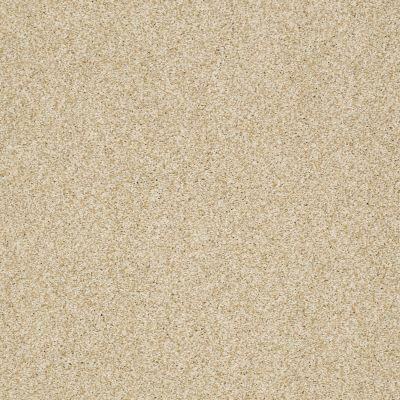Shaw Floors Caress By Shaw Milford Sound Santa Cruz 00106_CCS33