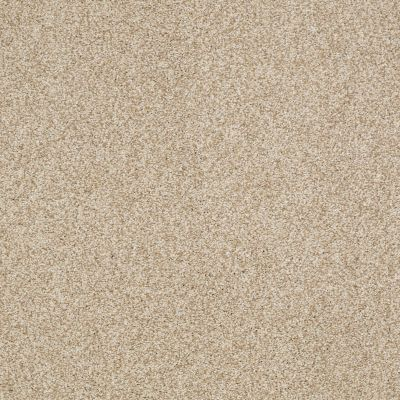 Shaw Floors Caress By Shaw Milford Sound Vicuna 00200_CCS33