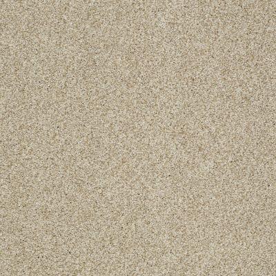 Shaw Floors Caress By Shaw Milford Sound Romney Marsh 00300_CCS33