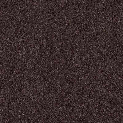 Shaw Floors Caress By Shaw Milford Sound Mountain Haze 00904_CCS33