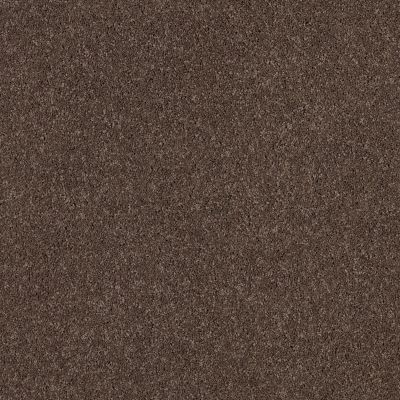 Shaw Floors Caress By Shaw Cashmere Classic I Spring – Wood 00725_CCS68