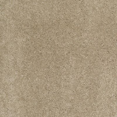 Shaw Floors Caress By Shaw Cashmere Classic II Pecan Bark 00721_CCS69