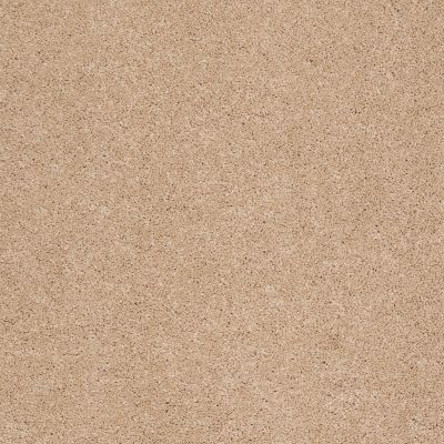 Shaw Floors Caress By Shaw Cashmere Classic III Maplewood North 00600_CCS70