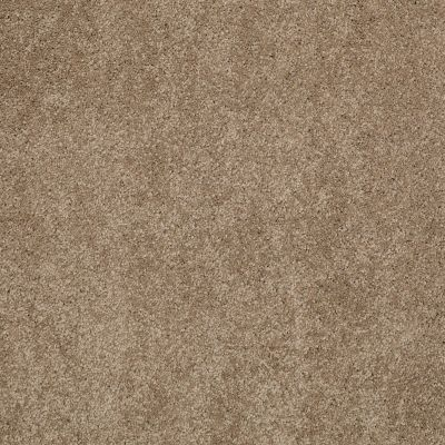 Shaw Floors Caress By Shaw Cashmere Classic III Pebble Path 00722_CCS70