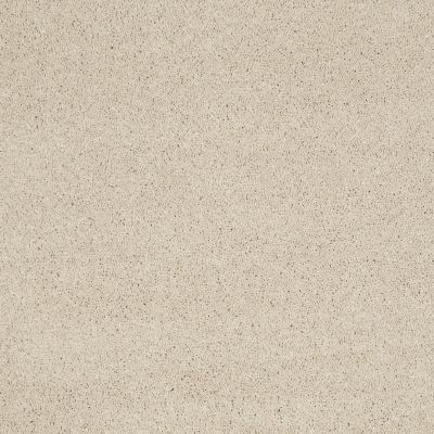 Shaw Floors Caress By Shaw Cashmere Classic Iv Cheviot 00104_CCS71