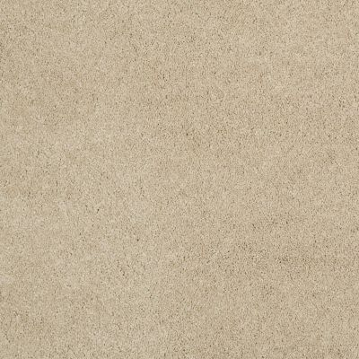 Shaw Floors Caress By Shaw Cashmere Classic Iv Gentle Doe 00128_CCS71