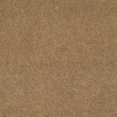 Shaw Floors Caress By Shaw Cashmere Classic Iv Navajo 00703_CCS71