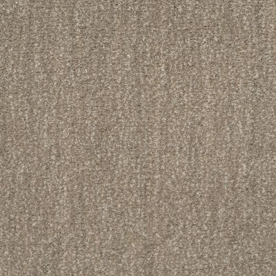 Shaw Floors Caress By Shaw Ombre Whisper Tumbleweed 00749_CCS79