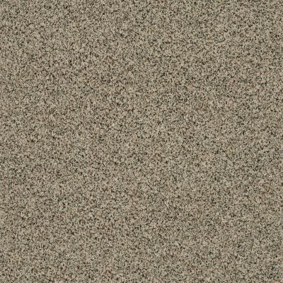 Shaw Floors Caress By Shaw Angora Classic II Wensleydale 0733A_CCS82