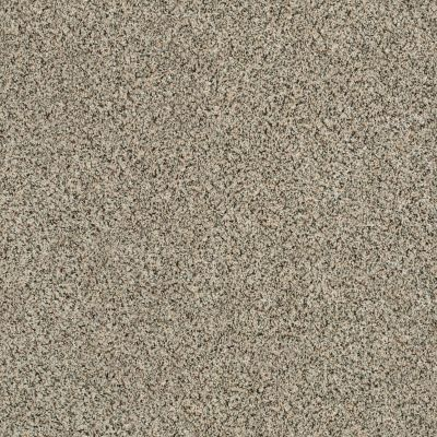 Shaw Floors Caress By Shaw Angora Classic II Walnut Shell 0750A_CCS82