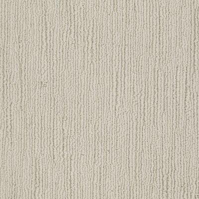 Shaw Floors Caress By Shaw Linenweave Classic Shetland 00108_CCS85