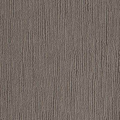 Shaw Floors Caress By Shaw Linenweave Classic Chinchilla 00526_CCS85