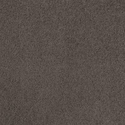 Shaw Floors Caress By Shaw Rich Opulence Burma Brown 00752_CCS88