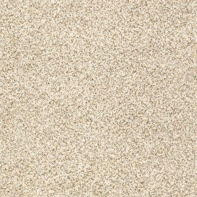 Shaw Floors Caress By Shaw Devon Classic I Cream Tea 0240B_CCS93