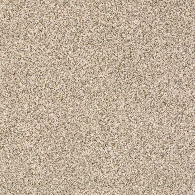 Shaw Floors Caress By Shaw Devon Classic I Cavern 0740B_CCS93