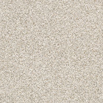 Shaw Floors Caress By Shaw Devon Classic Iv Breton 0140B_CCS96