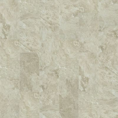 Shaw Floors Ceramic Solutions Artisan 12×24 Taupe 00150_CS09V