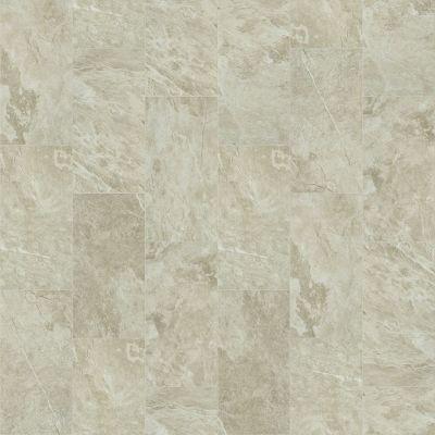 Shaw Floors Ceramic Solutions Artisan 12×24 Taupe 00150_CS09V