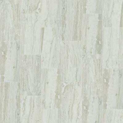 Shaw Floors Ceramic Solutions Cameo 12×24 Agate 00500_CS09X