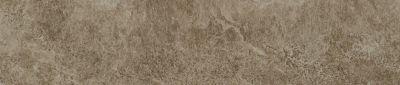 Shaw Floors Ceramic Solutions Artisan Bn Clay 00700_CS11V