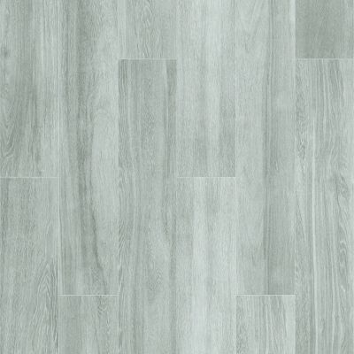 Shaw Floors Ceramic Solutions Aspen 8×48 Smoke 00500_CS19W