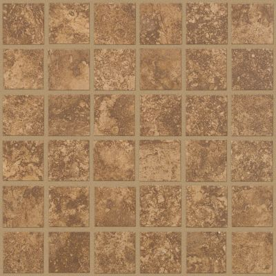 Shaw Floors Ceramic Solutions Sierra Madre Mosaic Foothills 00700_CS24L