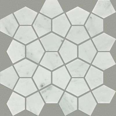 Shaw Floors Ceramic Solutions Chateau Pentagon Mosaic Bianco Carrara 00150_CS24X