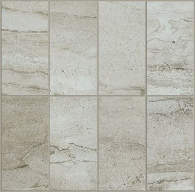 Shaw Floors Ceramic Solutions Riviera 4×8 Palladium 00200_CS27P