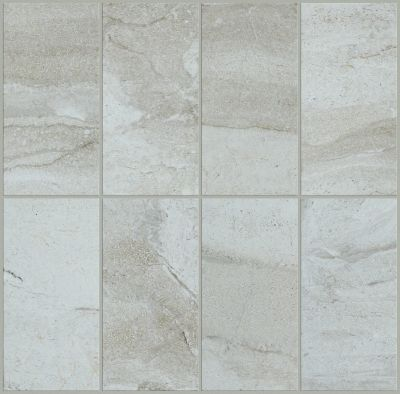 Shaw Floors Ceramic Solutions Riviera 4×8 Lunar 00500_CS27P