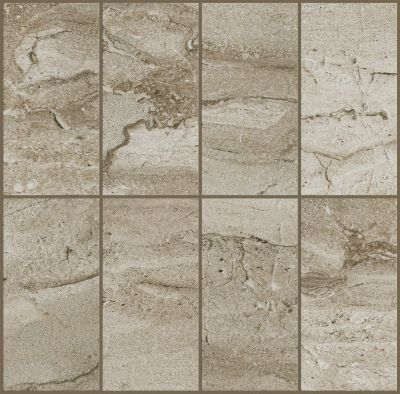 Shaw Floors Ceramic Solutions Riviera 4×8 Element 00700_CS27P