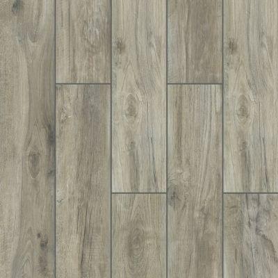 Shaw Floors Ceramic Solutions Silver 00500_CS32V