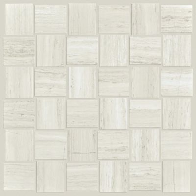 Shaw Floors Ceramic Solutions Range Mosaic Polished Ash 00550_CS33Z