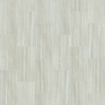 Shaw Floors Ceramic Solutions Range 12×24 Matte Ash 00550_CS34W