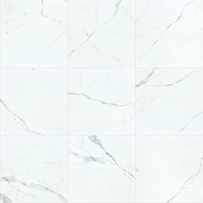Shaw Floors Ceramic Solutions Casino 24×24 Plsh Statuario 00151_CS37V