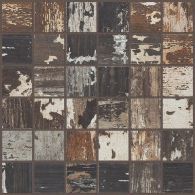 Shaw Floors Ceramic Solutions Timbered Mosaic Sourwood 00750_CS48X