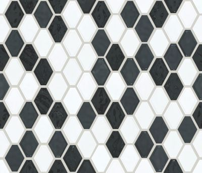 Shaw Floors Ceramic Solutions Geoscapes Diamond Black/White 00151_CS51V