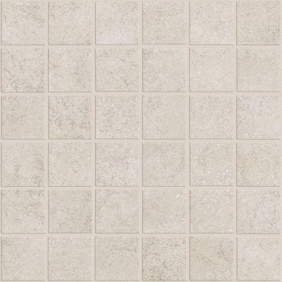 Shaw Floors Ceramic Solutions Nepal Mosaics Glacier 00100_CS55J