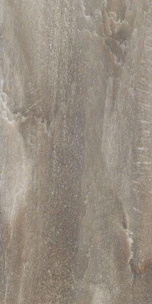 Shaw Floors Ceramic Solutions Fossil 12×24 Calcite 00546_CS56L