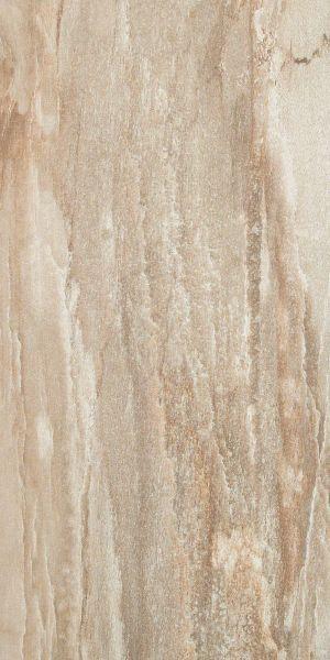 Shaw Floors Ceramic Solutions Fossil 12×24 Amber 00605_CS56L