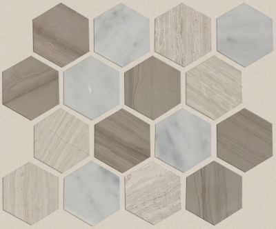 Shaw Floors Ceramic Solutions Chateau Hexagon Mosaic Bianco C Rockw Urba 00125_CS56P
