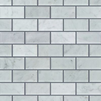Shaw Floors Ceramic Solutions Bianco Carrara 00150_CS58P