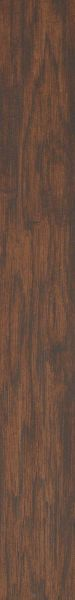 Shaw Floors Ceramic Solutions Petrified Hcky Bn Fossil 00700_CS62Q