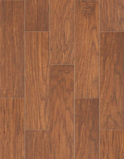 Shaw Floors Ceramic Solutions Petrified Hickory 6×24 Ancient 00600_CS65K