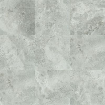 Shaw Floors Ceramic Solutions Contour 20×20 Evolve 00500_CS65Z