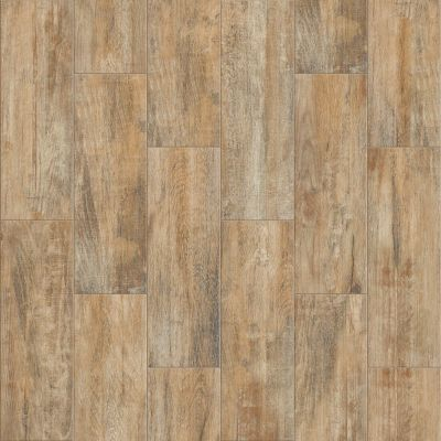 Shaw Floors Ceramic Solutions Olympia 7×22 Natural 00200_CS68Q