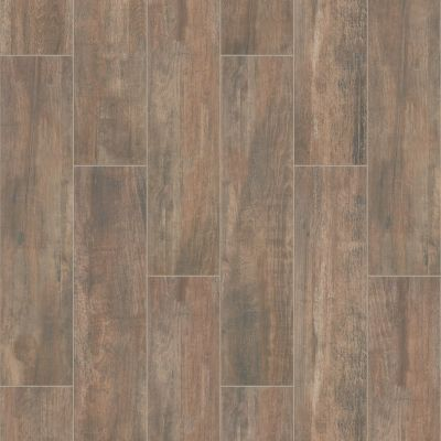 Shaw Floors Ceramic Solutions Olympia 8×36 Brown 00700_CS71W